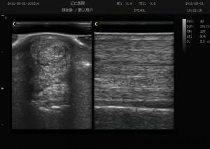 Állatorvosi ultrahang készülék